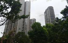 地方两会释放楼市信号:房住不炒、规范长租房